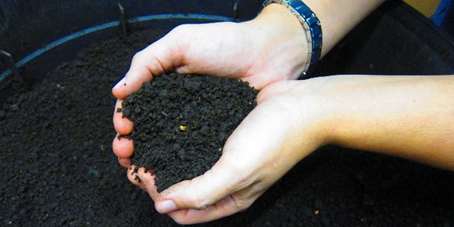 IV CompostFest Desentralitzat i Multiformat