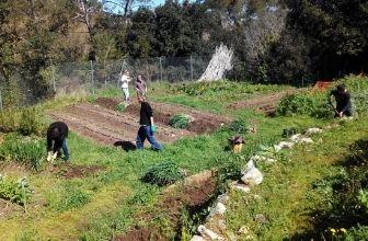 Tarpuna i Espai Ambiental presentem els cercles compostaires